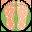 Custom Orthotics and Shoes